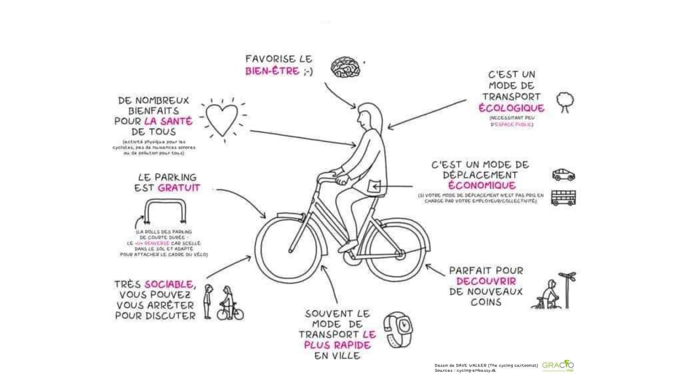 les-10-raisons-usagers-pratique-du-vélo